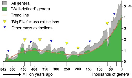 Figure 4: Phanerozoic biodiversity as shown by the fossil record. Source Wikipedia